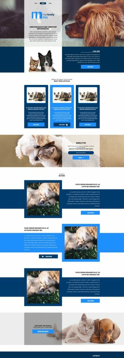 Pet Niche Affiliate Website